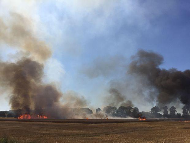 Graanbrand in Kessel-Eik, waar door het KNMI in juli de minste regen van Limburg werd gemeten